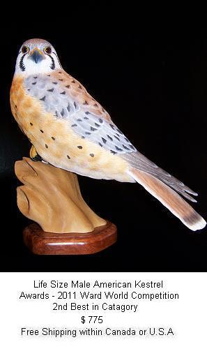 Wildfowl and wildlife carvings original art hand crafted